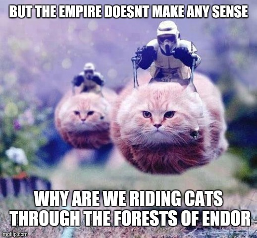 Storm Trooper Cats | BUT THE EMPIRE DOESNT MAKE ANY SENSE WHY ARE WE RIDING CATS THROUGH THE FORESTS OF ENDOR | image tagged in storm trooper cats | made w/ Imgflip meme maker