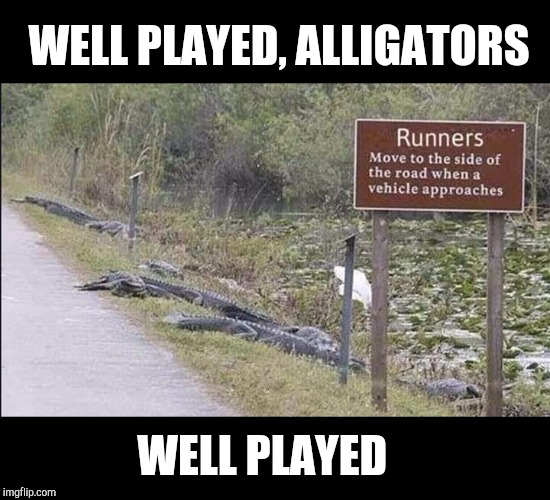 Well played  |  WELL PLAYED, ALLIGATORS; WELL PLAYED | image tagged in alligators,jbmemegeek,funny signs,fails | made w/ Imgflip meme maker