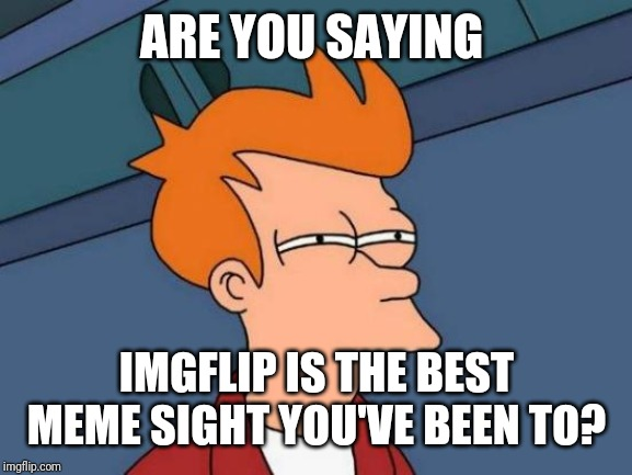 Futurama Fry Meme | ARE YOU SAYING IMGFLIP IS THE BEST MEME SIGHT YOU'VE BEEN TO? | image tagged in memes,futurama fry | made w/ Imgflip meme maker