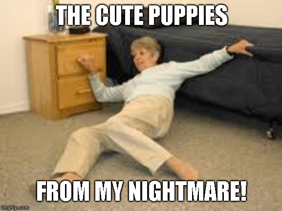 Help I've fallen in a K-hole and can't get up | THE CUTE PUPPIES FROM MY NIGHTMARE! | image tagged in help i've fallen in a k-hole and can't get up | made w/ Imgflip meme maker