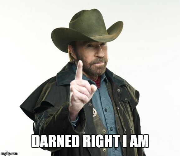 Chuck Norris Finger Meme | DARNED RIGHT I AM | image tagged in memes,chuck norris finger,chuck norris | made w/ Imgflip meme maker