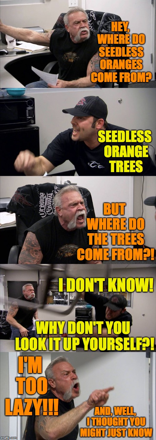 The internet has changed our lives forever  ( : | HEY, WHERE DO SEEDLESS ORANGES COME FROM? SEEDLESS ORANGE TREES BUT WHERE DO THE TREES COME FROM?! WHY DON'T YOU LOOK IT UP YOURSELF?! I'M T | image tagged in memes,american chopper argument,forever,american chopper doesnt find the internet | made w/ Imgflip meme maker