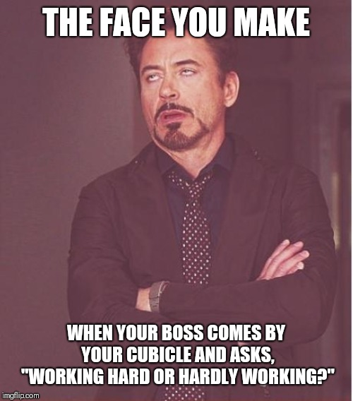 "Working Hard or Hardly Working | THE FACE YOU MAKE WHEN YOUR BOSS COMES BY YOUR CUBICLE AND ASKS, ""WORKING HARD OR HARDLY WORKING?"" 