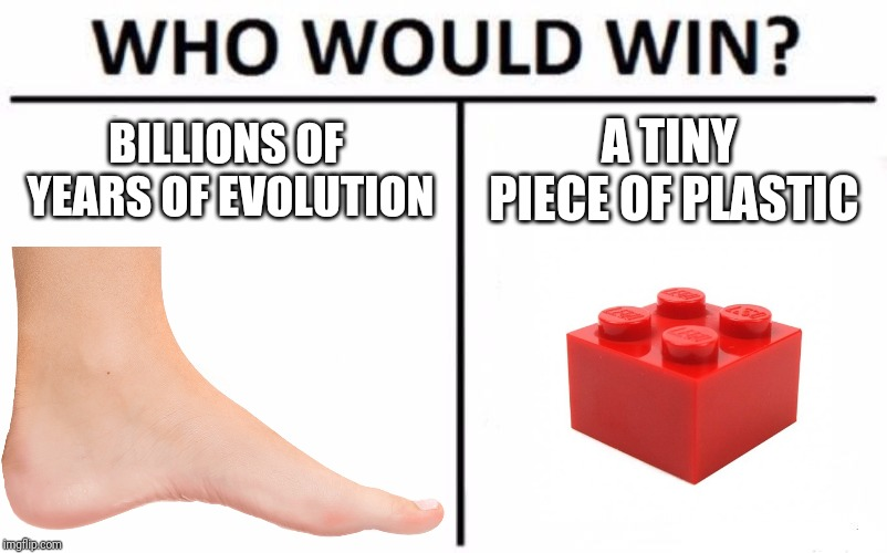 Who Would Win? Meme | BILLIONS OF YEARS OF EVOLUTION A TINY PIECE OF PLASTIC | image tagged in memes,who would win,funny,evolution,lego | made w/ Imgflip meme maker