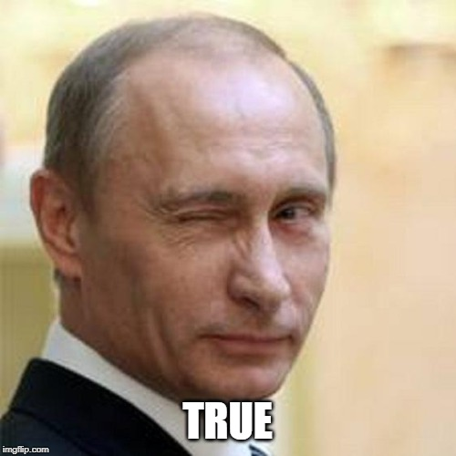 TRUE | image tagged in putin winking | made w/ Imgflip meme maker
