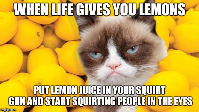 When Life gives you Lemons, | WHEN LIFE GIVES YOU LEMONS PUT LEMON JUICE IN YOUR SQUIRT GUN AND START SQUIRTING PEOPLE IN THE EYES | image tagged in grumpy cat lemons,memes,fun,squirt gun,when life gives you lemons | made w/ Imgflip meme maker