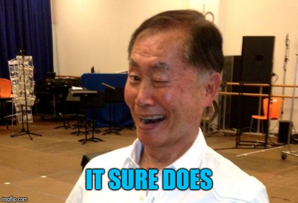Winking George Takei | IT SURE DOES | image tagged in winking george takei | made w/ Imgflip meme maker