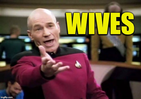 Picard Wtf Meme | WIVES | image tagged in memes,picard wtf | made w/ Imgflip meme maker