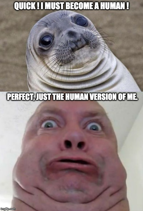 QUICK ! I MUST BECOME A HUMAN ! PERFECT, JUST THE HUMAN VERSION OF ME. | image tagged in memes,awkward moment sealion | made w/ Imgflip meme maker