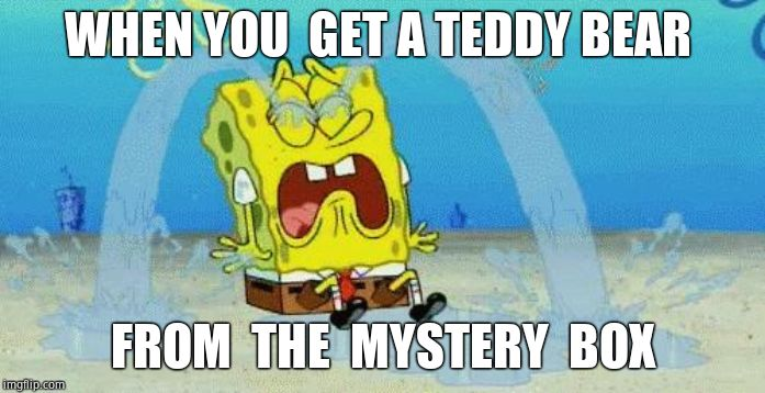 sad crying spongebob | WHEN YOU  GET A TEDDY BEAR FROM  THE  MYSTERY  BOX | image tagged in sad crying spongebob | made w/ Imgflip meme maker