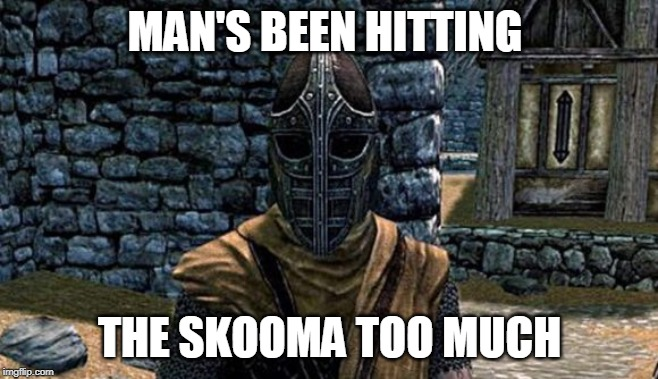Image tagged in skyrim guard - Imgflip