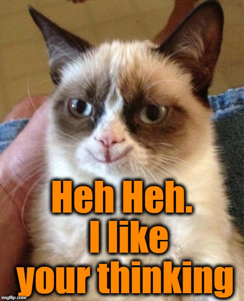 Happy grumpy cat | Heh Heh.  I like your thinking | image tagged in happy grumpy cat | made w/ Imgflip meme maker