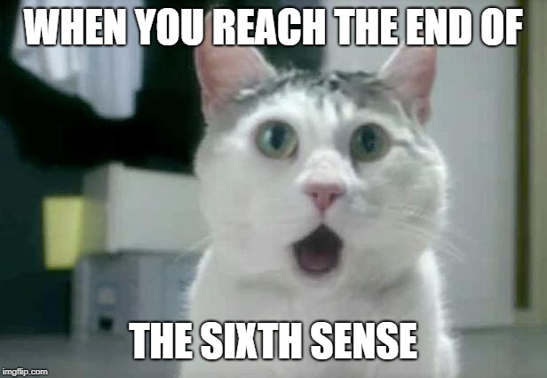 OMG Cat | WHEN YOU REACH THE END OF THE SIXTH SENSE | image tagged in memes,omg cat | made w/ Imgflip meme maker