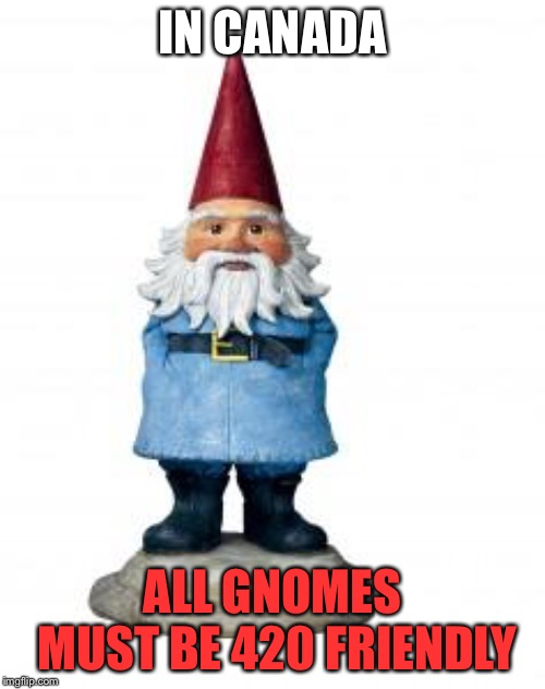 gnome |  IN CANADA; ALL GNOMES MUST BE 420 FRIENDLY | image tagged in gnome | made w/ Imgflip meme maker