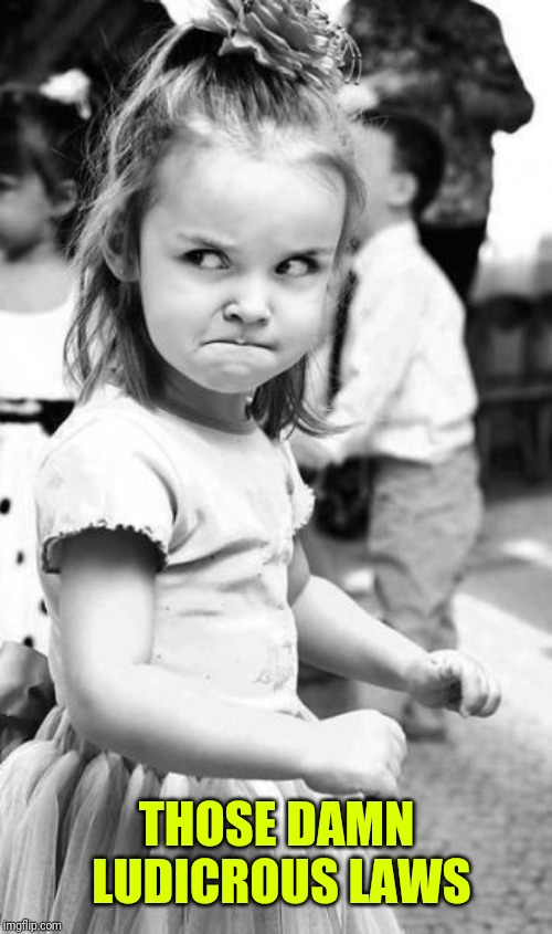 Angry Toddler Meme | THOSE DAMN LUDICROUS LAWS | image tagged in memes,angry toddler | made w/ Imgflip meme maker
