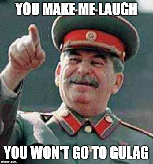 Stalin says | YOU MAKE ME LAUGH YOU WON'T GO TO GULAG | image tagged in stalin says | made w/ Imgflip meme maker