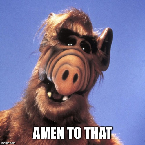 Alf  | AMEN TO THAT | image tagged in alf | made w/ Imgflip meme maker