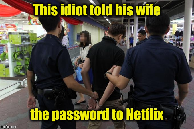 This idiot told his wife the password to Netflix | made w/ Imgflip meme maker