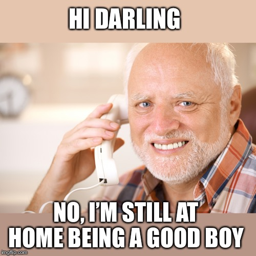 hide the pain harold phone | HI DARLING NO, I'M STILL AT HOME BEING A GOOD BOY | image tagged in hide the pain harold phone | made w/ Imgflip meme maker