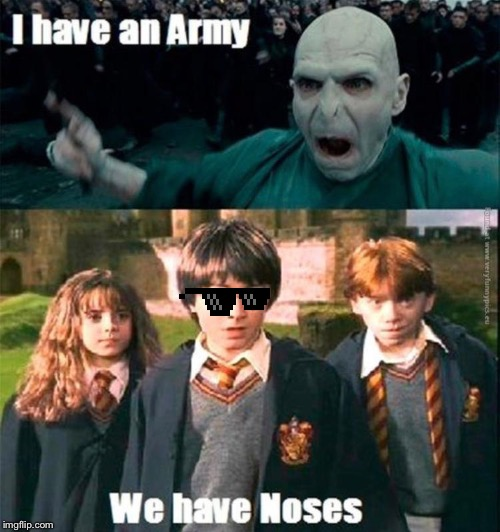 Harry Potter Voldemort | image tagged in harry potter,lord voldemort,voldemort,hermione granger,ron weasley | made w/ Imgflip meme maker