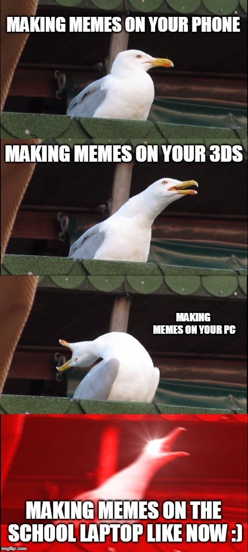 Inhaling Seagull | MAKING MEMES ON YOUR PHONE MAKING MEMES ON YOUR 3DS MAKING MEMES ON YOUR PC MAKING MEMES ON THE SCHOOL LAPTOP LIKE NOW :) | image tagged in memes,inhaling seagull | made w/ Imgflip meme maker