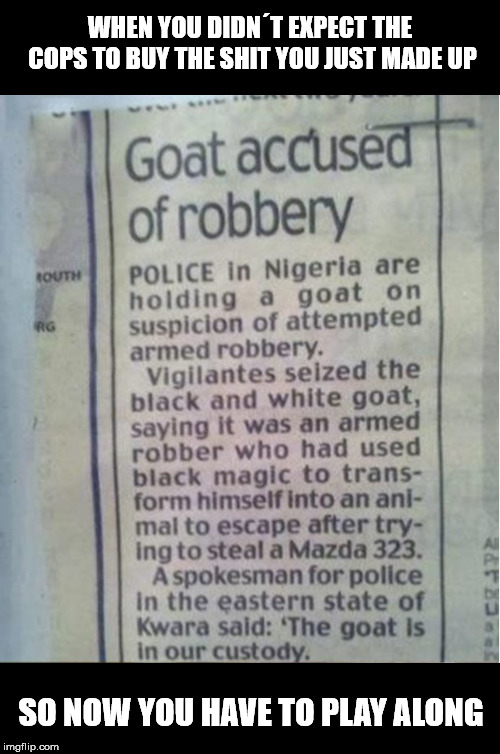 That goat out of hand quickly! |  WHEN YOU DIDN´T EXPECT THE COPS TO BUY THE SHIT YOU JUST MADE UP; SO NOW YOU HAVE TO PLAY ALONG | image tagged in goat,police,memes,funny memes,robbery | made w/ Imgflip meme maker