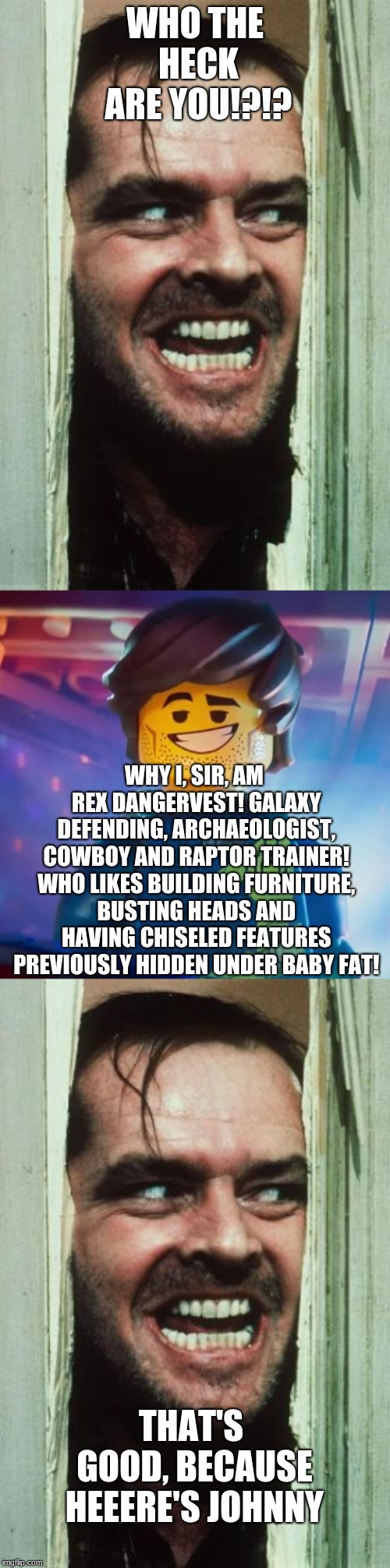 Johnny meets Rex Dangervest | WHO THE HECK ARE YOU!?!? WHY I, SIR, AM REX DANGERVEST! GALAXY DEFENDING, ARCHAEOLOGIST, COWBOY AND RAPTOR TRAINER! WHO LIKES BUILDING FURNI | image tagged in memes,here's johnny,the lego movie,the shining,fun | made w/ Imgflip meme maker