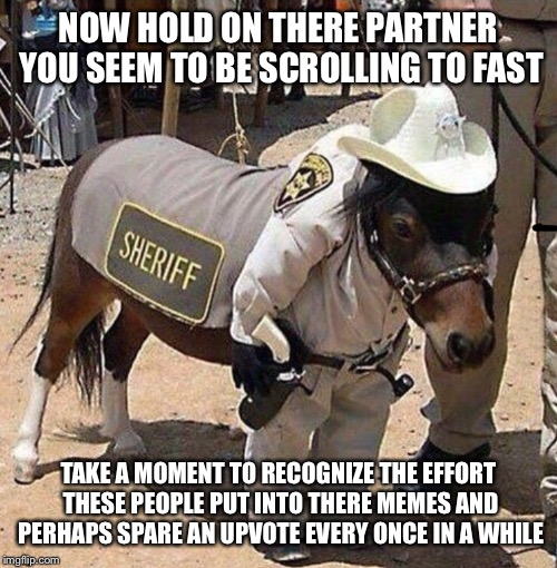 Hold on there partner | NOW HOLD ON THERE PARTNER YOU SEEM TO BE SCROLLING TO FAST TAKE A MOMENT TO RECOGNIZE THE EFFORT THESE PEOPLE PUT INTO THERE MEMES AND PERHA | image tagged in horse,western | made w/ Imgflip meme maker