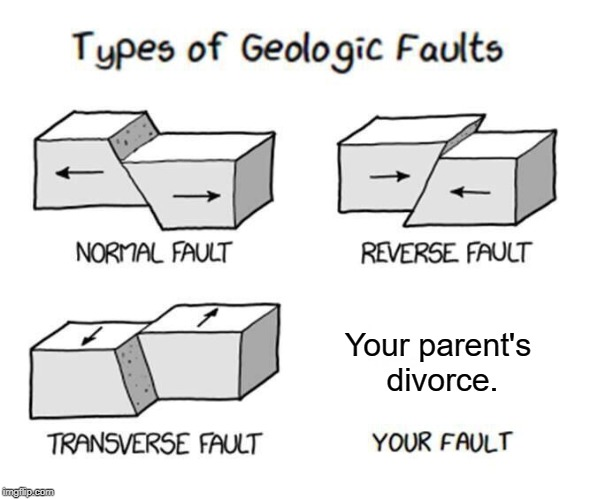 Types of Faults | Your parent's divorce. | image tagged in types of faults | made w/ Imgflip meme maker