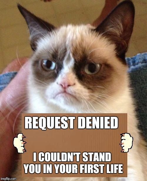 Grumpy Cat Cardboard Sign | REQUEST DENIED I COULDN'T STAND YOU IN YOUR FIRST LIFE | image tagged in grumpy cat cardboard sign | made w/ Imgflip meme maker