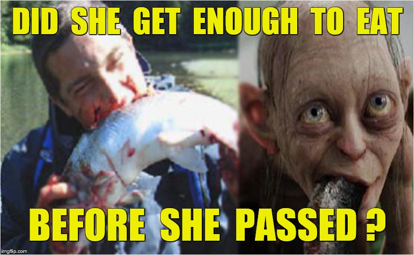 DID  SHE  GET  ENOUGH  TO  EAT BEFORE  SHE  PASSED ? | made w/ Imgflip meme maker