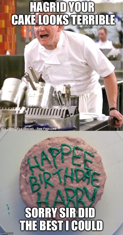 HAGRID YOUR CAKE LOOKS TERRIBLE SORRY SIR DID THE BEST I COULD | image tagged in memes,chef gordon ramsay | made w/ Imgflip meme maker