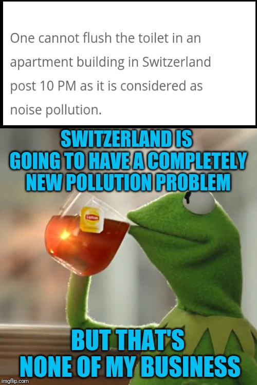 When you have to go, you have to go; Ludicrous Laws Week (April 1-7, a LordCheesus, Katechuks, and Sydneyb event) | SWITZERLAND IS GOING TO HAVE A COMPLETELY NEW POLLUTION PROBLEM BUT THAT'S NONE OF MY BUSINESS | image tagged in memes,but thats none of my business,kermit the frog,confused dafuq jack sparrow what,toilet humor,switzerland | made w/ Imgflip meme maker