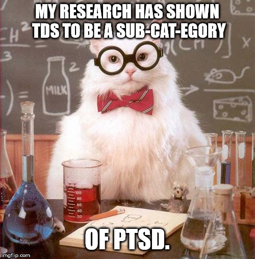 Science Cat | MY RESEARCH HAS SHOWN TDS TO BE A SUB-CAT-EGORY OF PTSD. | image tagged in science cat | made w/ Imgflip meme maker
