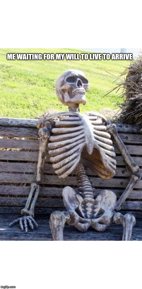 Waiting Skeleton Meme | ME WAITING FOR MY WILL TO LIVE TO ARRIVE | image tagged in memes,waiting skeleton | made w/ Imgflip meme maker