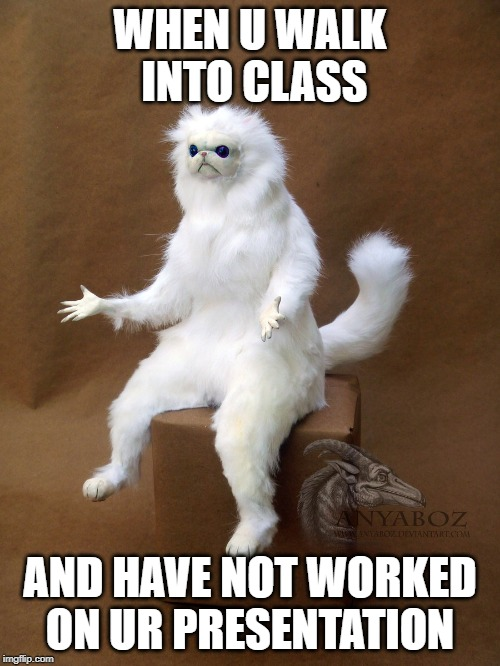 Persian Cat Room Guardian Single | WHEN U WALK INTO CLASS AND HAVE NOT WORKED ON UR PRESENTATION | image tagged in memes,persian cat room guardian single | made w/ Imgflip meme maker