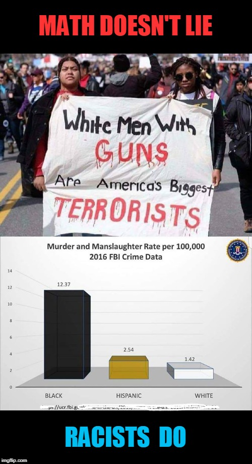 FBI Stats | MATH DOESN'T LIE RACISTS  DO | image tagged in racist,fbi,stats | made w/ Imgflip meme maker