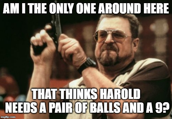 Am I The Only One Around Here Meme | AM I THE ONLY ONE AROUND HERE THAT THINKS HAROLD NEEDS A PAIR OF BALLS AND A 9? | image tagged in memes,am i the only one around here | made w/ Imgflip meme maker