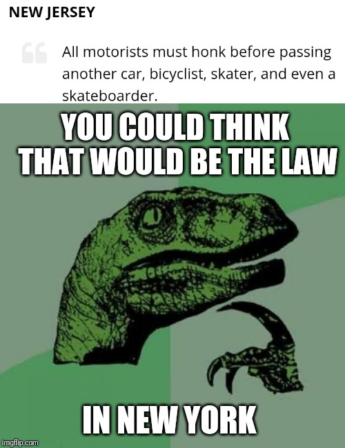 Ludicrous laws week, April 1-7 |  YOU COULD THINK THAT WOULD BE THE LAW; IN NEW YORK | image tagged in memes,philosoraptor,dumb laws,new jersey,new york | made w/ Imgflip meme maker
