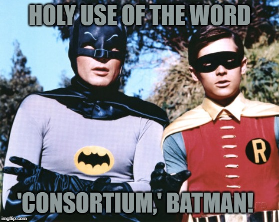 HOLY USE OF THE WORD; 'CONSORTIUM,' BATMAN! | image tagged in batman robin | made w/ Imgflip meme maker