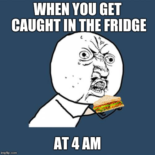 Y U No Meme | WHEN YOU GET CAUGHT IN THE FRIDGE AT 4 AM | image tagged in memes,y u no | made w/ Imgflip meme maker