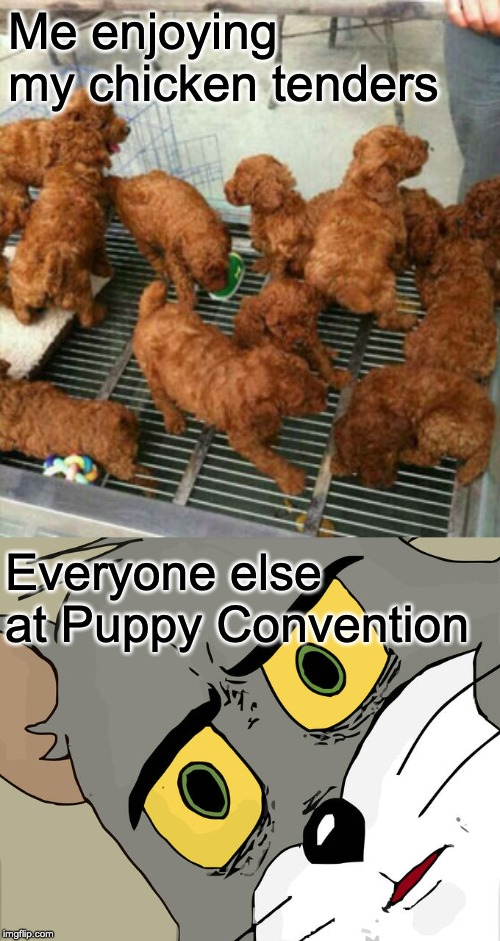 I thought they were free samples | Me enjoying my chicken tenders Everyone else at Puppy Convention | image tagged in memes,unsettled tom,food | made w/ Imgflip meme maker