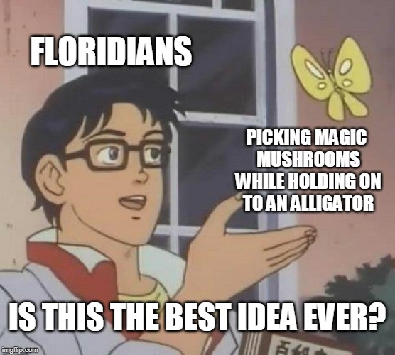 Is This A Pigeon Meme | FLORIDIANS PICKING MAGIC MUSHROOMS WHILE HOLDING ON TO AN ALLIGATOR IS THIS THE BEST IDEA EVER? | image tagged in memes,is this a pigeon | made w/ Imgflip meme maker