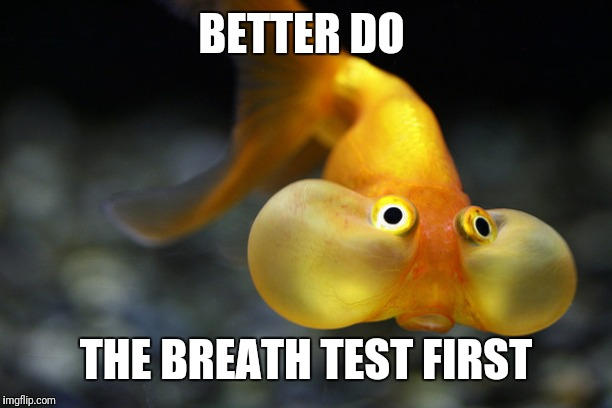 hold your breath goldfish | BETTER DO THE BREATH TEST FIRST | image tagged in hold your breath goldfish | made w/ Imgflip meme maker