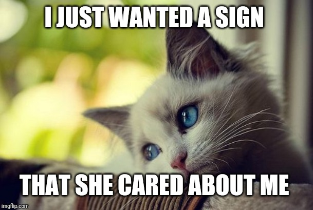 First World Problems Cat Meme | I JUST WANTED A SIGN THAT SHE CARED ABOUT ME | image tagged in memes,first world problems cat | made w/ Imgflip meme maker