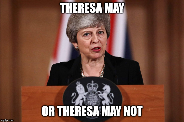 Brexit or maybe not ... | THERESA MAY OR THERESA MAY NOT | image tagged in theresa may,brexit,humor,fun | made w/ Imgflip meme maker