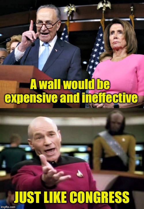 Like talking to a wall | A wall would be expensive and ineffective JUST LIKE CONGRESS | image tagged in memes,picard wtf,pelosi schumer,border wall | made w/ Imgflip meme maker
