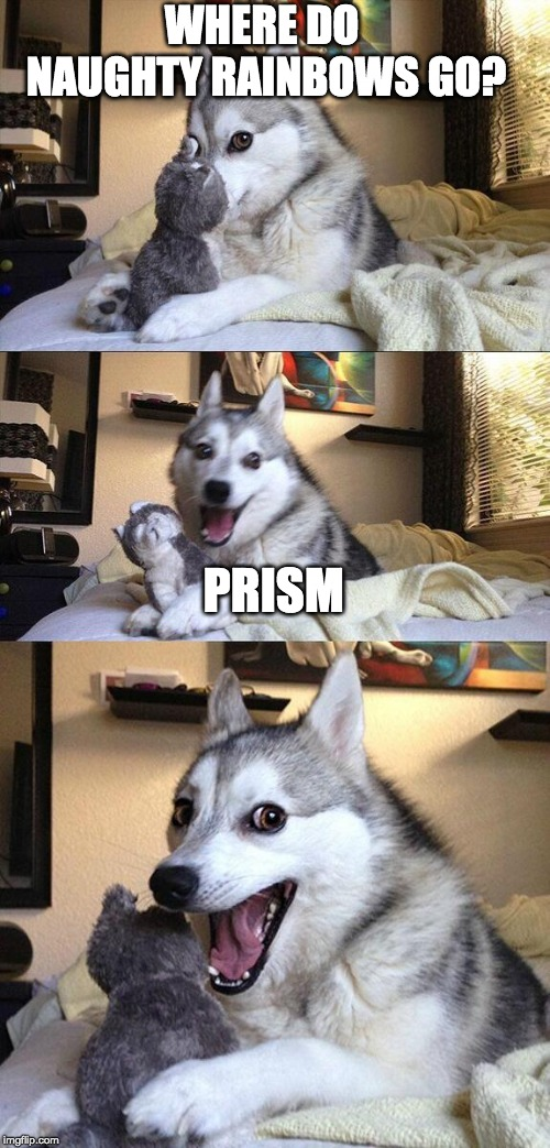 Bad Pun Dog Meme | WHERE DO NAUGHTY RAINBOWS GO? PRISM | image tagged in memes,bad pun dog | made w/ Imgflip meme maker