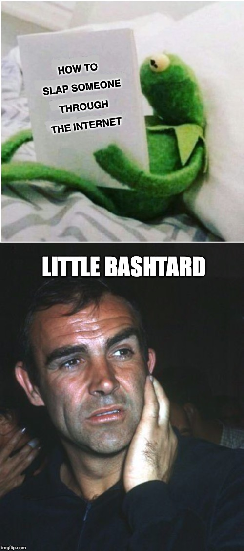 Payback | HOW TO SLAP SOMEONE THROUGH THE INTERNET LITTLE BASHTARD | image tagged in kermit vs connery,slap,internet | made w/ Imgflip meme maker