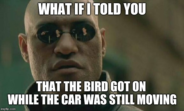 Matrix Morpheus Meme | WHAT IF I TOLD YOU THAT THE BIRD GOT ON WHILE THE CAR WAS STILL MOVING | image tagged in memes,matrix morpheus | made w/ Imgflip meme maker